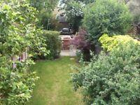 really cosy 3 bedroom maisonette in earlsfield- garden and huge kitchen