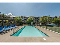 Looking to Share New 2 bdrm 2 bath Apt
