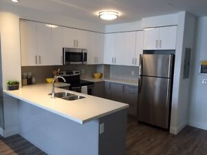 NEW! Stunning 1 bedroom apartment for rent in Belmont Village!