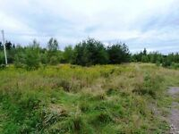 Lot 11-10 Rte 134 Shediac Cape, NB E4P 3G8- 2 Acres