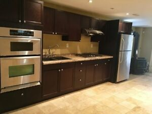 Renovated spacious walk out in Vaughan