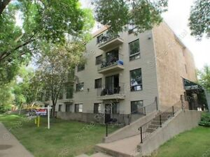 BEAUTIFUL 1-BEDROOM CONDO WITH PARKING IN DOWNTOWN