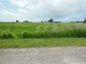 13 WaterView/Waterfront Access/WATERFRONT;  ;DISCOUNTED PRICE ! Kingston Kingston Area image 3