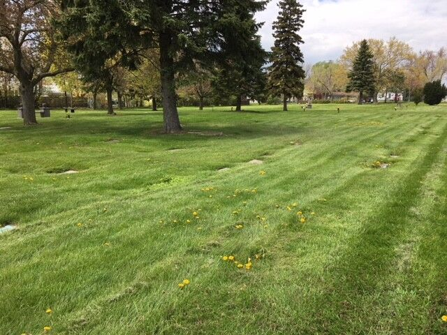 Resthaven Memorial Gardens Cemetery — 4 Plots for Sale | Other ...