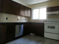 2 Bedroom with fully developed basement