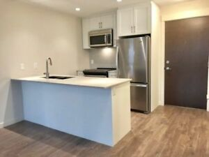 BRAND NEW LUXURY 1 BED NEAR GRENADIER PARK 1ST MONTH IS FREE!