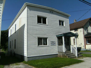 229-231 Brunswick St. - Duplex Income property