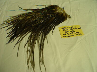Dry Fly Hackle Craft Millinery Fly F Feather Whiting Large Grizzly Variant