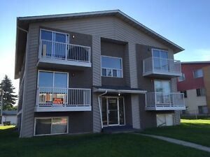 IMMACULATE LARGE FULLY RENOVATED 1 BEDROOM CONDO in West Edmonto