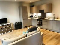 Absolutely stunning one bedroom apartment set within the new sought after development in E14