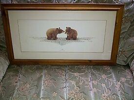 Cub picture