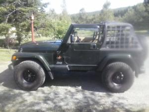 1998 Jeep TJ Cabriolet