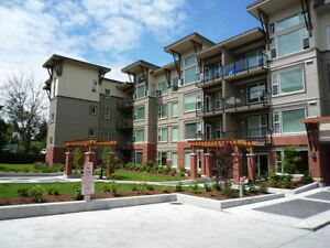 $85 / 1br - 800ft2 - Bright One Bedroom Corner Suite (CA)