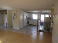 STUDENT HOMES AND ROOMS BARRIE AND ORILLIA-AVAILABLE NOW