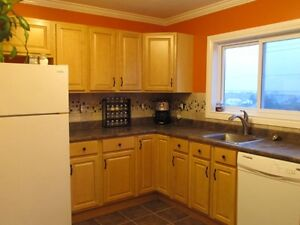 3 BEDROOM APT ALL INC WITHIN WALKING DISTANCE NSCC AKERLEY