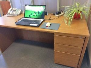 Solid Wood Desk with Credenza and Hutch