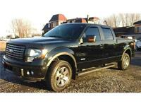 2011 Ford F-150 FX4 OFF ROAD