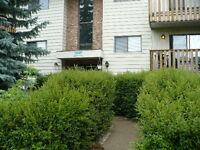 1 Bed, 1 Bath 5811, 58 Ave, Unit 203 Avail October 1st $895