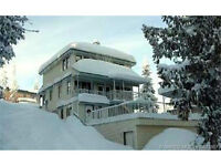 Fabulous 4 Bdrm Silver Star Chalet with Suite