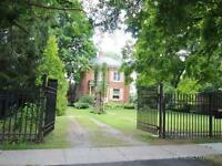 Beautiful Home and 1/2 acre lot