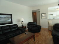 1111 MAIN STREET- BEAUTIFUL, FURNISHED SUITES