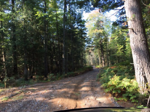 Twin Lakes-St. Joseph Island-Waterfront lot Ready for building!