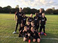 Bromford Lions F.C 10s school years 4/5