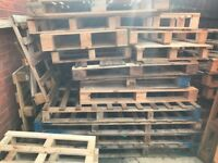 Pallets, About 30 available various sizes only 50p each or as many as you can take for just £2
