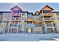 New 1 bedroom Condo for rent NW Kincora with 2 Parking Stalls