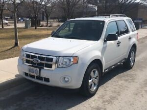 Fully Loaded 2009 Ford Escape XLT - $5,985