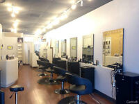Special !!! Men's Haircut $15, Coupe Homme $15 (Montreal)