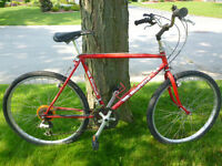 Vintage Red Bianchi Road Bike - 18 Speed