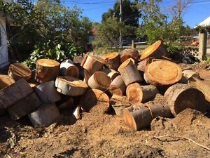 Free firewood Lane Cove North Lane Cove Area Preview