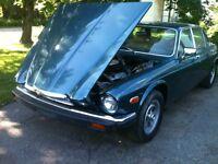 1981 jaguar xj12