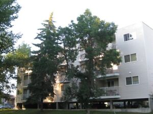 1 Bedroom Suite Avail Dec 1st!– Off Whyte Ave, Close to U of A