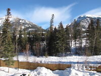 2 Bedroom 2 Bathroom Fully Furnished Condo in Canmore