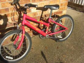 Girls Raleigh mountain bike 20 inch wheels