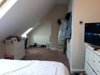 2 MINUTES FROM NORTHERN LINE LARGE DOUBLE BEDROOM IN A GREAT HOUSE WIMBLEDON/MORDEN BOARDERS