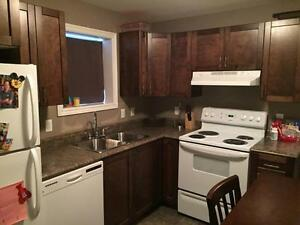 Beautiful Two Bedroom Apartment Available February 1st
