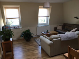 Unfurnished double bedroom in a lovely flat in Clifton by the Downs