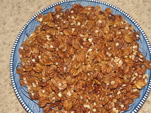 Minnesota Shagbark Shelled HICKORY NUTS 2020 No chemicals Large percent 1/2pcs.