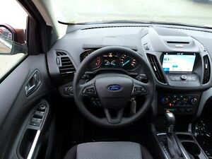 2017 Ford Escape SE Edmonton Edmonton Area image 12