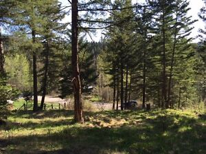Lot on McCreight Rd in Pinantan! 0.46 Acres Partially Developed!