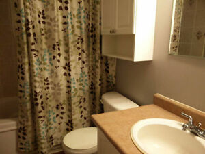 Spacious Rooms Near Fairview Mall after Dec 19 Kitchener / Waterloo Kitchener Area image 1