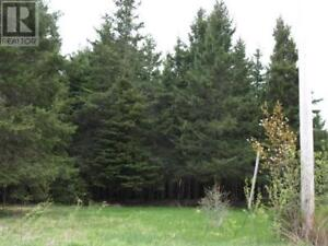 Large lot in developing area, looks towards Drurys Cove,paved rd