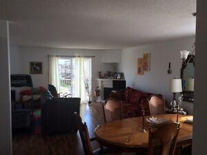 Bel appartement à louer / 1 mois gratuit Gatineau Ottawa / Gatineau Area image 2