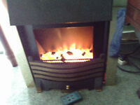 royal electric fire with remote control