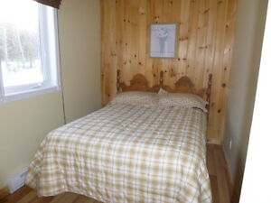 Chalet à vendre à l'Anse-Saint-Jean Saguenay Saguenay-Lac-Saint-Jean image 8