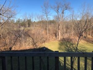 FONTHILL FOR RENT - BIG YARD & PRIVACY