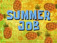 Customer Sales/Service Summer Work Openings- $20.25 base/appt.